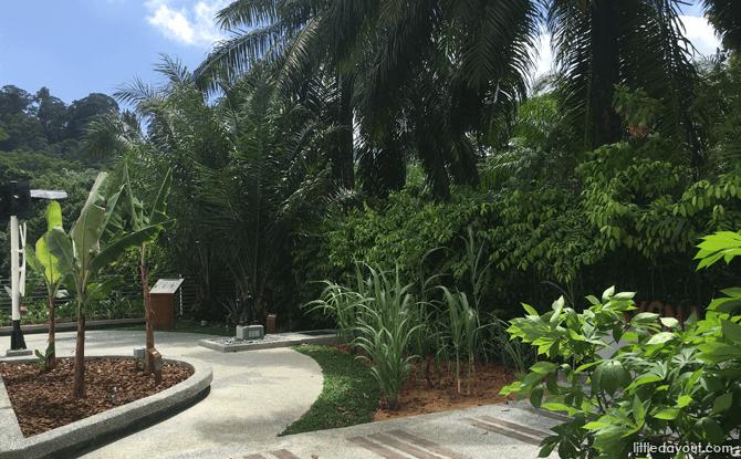 Syonan Garden