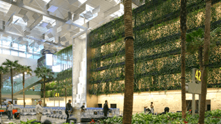 00-Arrival-Hall-view-of-the-Green-Wall-Terminal-3