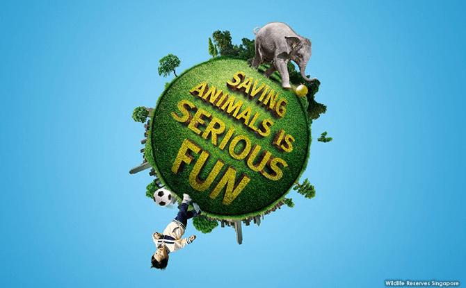 Go Green for Wildlife - Singapore Zoo