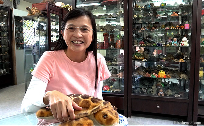 Interview With Connie Tan, Live Turtle And Tortoise Museum: How The Name Came About And Its Recent Move To ORTO