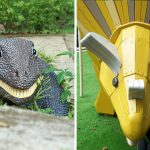Fu Shan Garden Is Woodland's Own Jurassic Park With New And Old Dinosaur Playgrounds