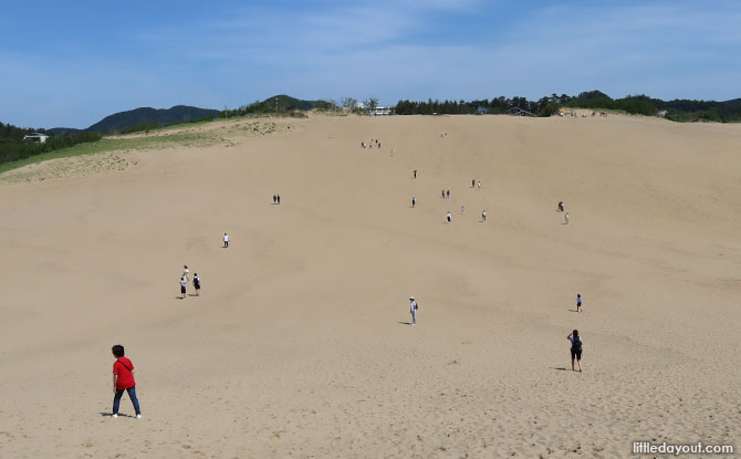 Tottori Sand Dunes and Sand Museum: A Simply Sandsational Day Trip to Tottori, Japan