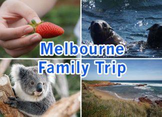 Melbourne Family Trip: Five Marvellous Days Down Under