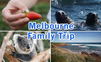Melbourne Family Trip: Five Marvellous Days Down Under