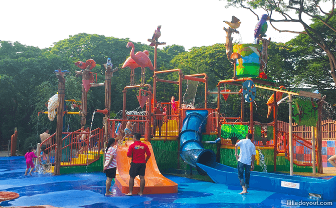 Birdz of Play at Jurong Bird Park Timings - Wet Area till 5.30 pm; Dry Area till 6 pm