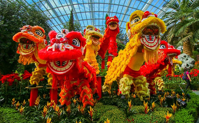 Lion Dance Display at Dahlia Dreams 2021