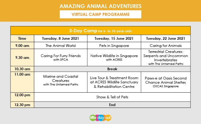 Little Day Out's Amazing Animal Adventures Programme
