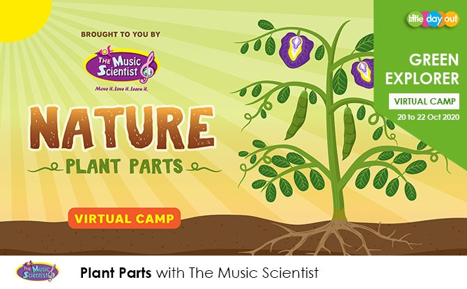 Green Explorer Camp: Plant Parts by The Music Scientist