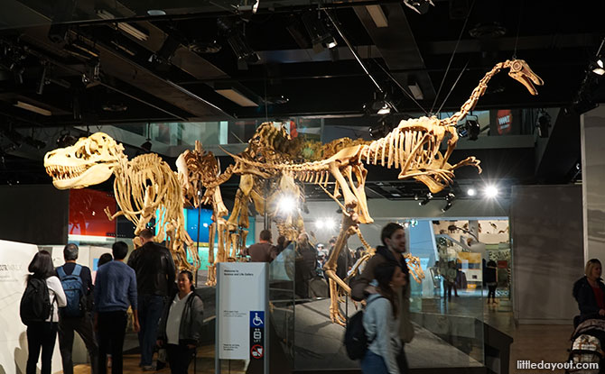 01-Melbourne-Museum