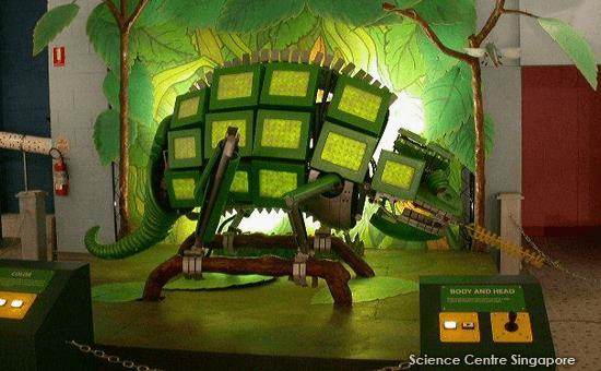 Robotic Zoo