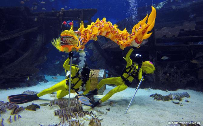 Gong SEA Fa Cai at S.E.A. Aquarium, Resorts World Sentosa