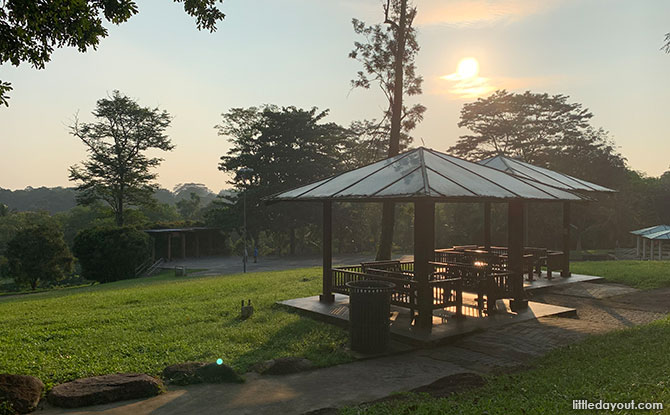 Bukit Panjang Neighbourhood 2 Park: Hillside Retreat With An Obstacle Playground