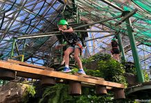 Cairns ZOOM & Wildlife Dome: Go Ziplining Over A Crocodile In Australia