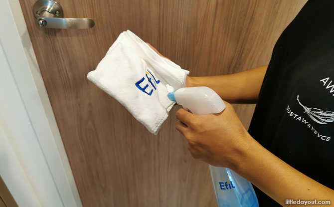 Parent Review: Efil Household Disinfectant Spray