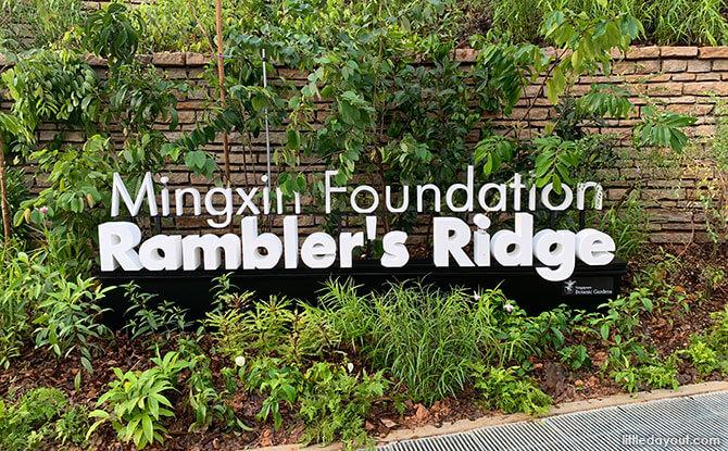 Mingxin Foundation Rambler's Ridge