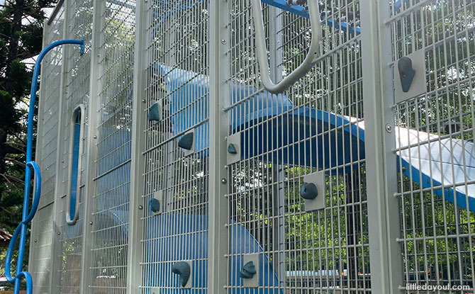Vertical Playgrounds in Singapore