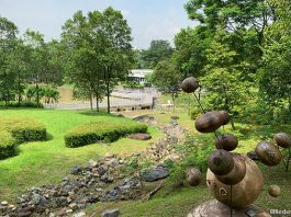 Jurong Eco-Garden: Hidden Park At The Fringe Of NTU