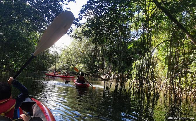 Family Review: 6 Reasons Why You Should Kayak To Sungei Khatib Bongsu