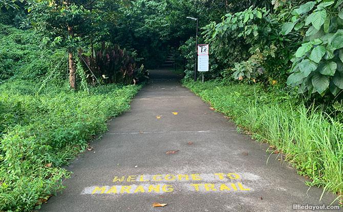 Where is the Marang Trail?