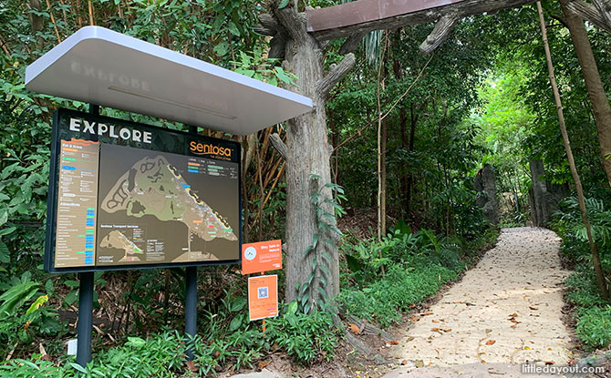 What to See at the Mount Imbiah Trail