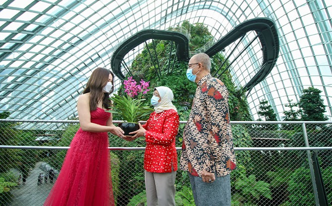 From left to right: Mediacorp actress Rebecca Lim presenting an Aranda 'Gardens by the Bay' orchid to President Halimah Yacob and Mr Mohamed Abdullah Alhabshee during the recording of the Gardens by the Bay and Mediacorp National Day Concert