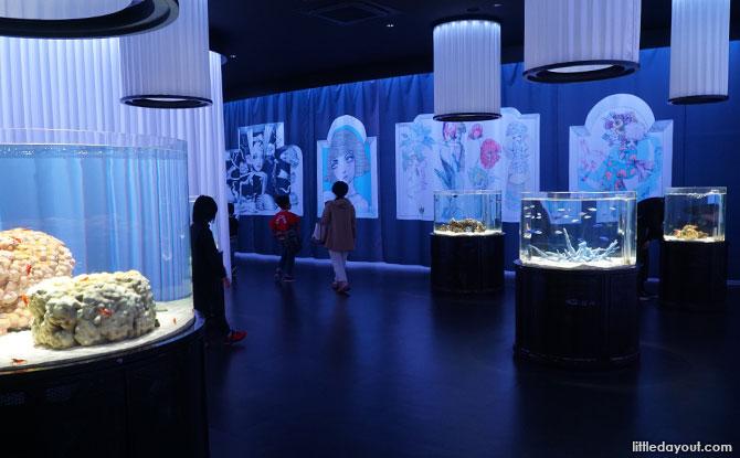 NIFREL In Osaka, Japan: A Unique Aquazoo Experience