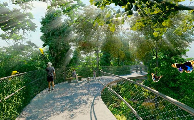 Help Shape The Bukit Timah-Rochor Green Corridor Project