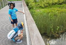 Five Tips For Parents On How To Encourage Outdoor Learning – From An ECDA Fellow