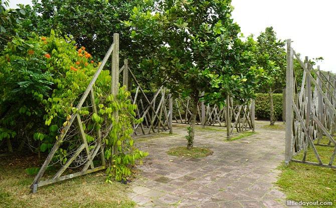 Pasir Ris Park Maze