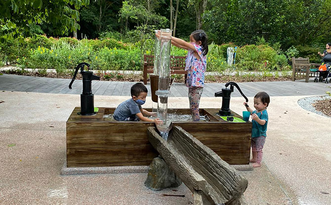 Photosynthesis Water Play Area Opens At Jacob Ballas Children's Garden