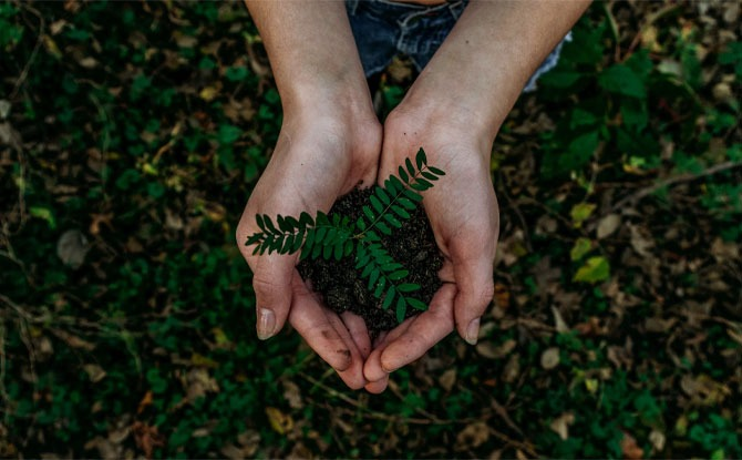 Five Lifestyle Changes To Live More Sustainably