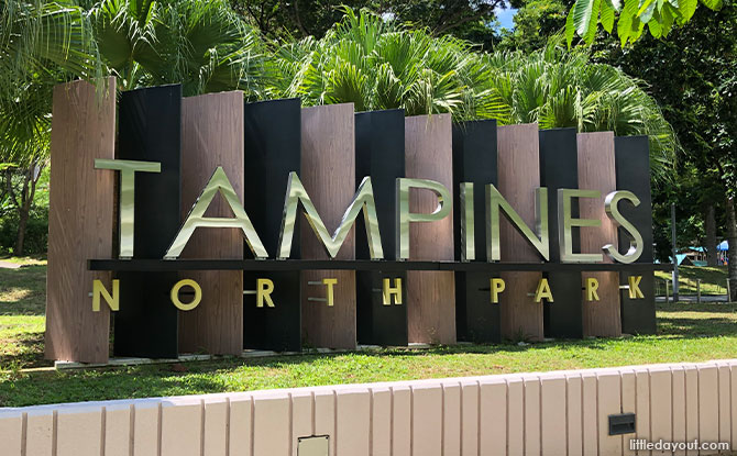 Tampines North Park: Green Space With IPPT Training Space