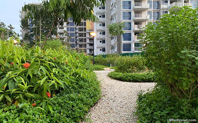 Paths at Tampines Park