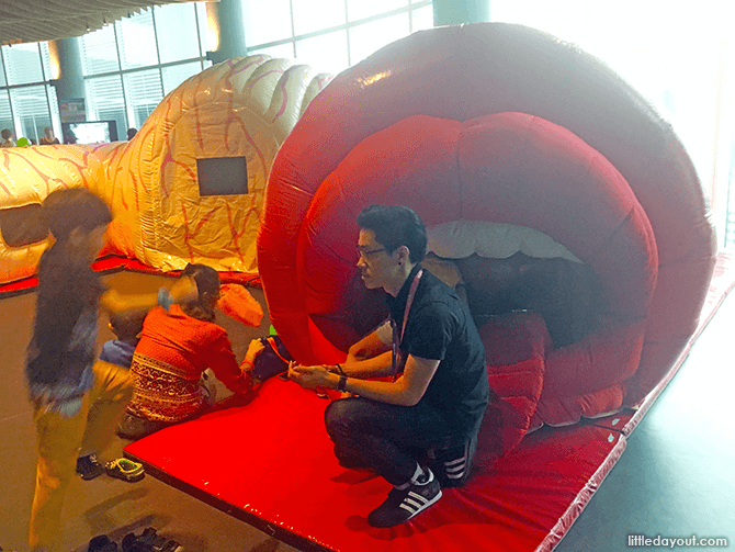 "Kids can crawl through an inflatable ""digestive system"""