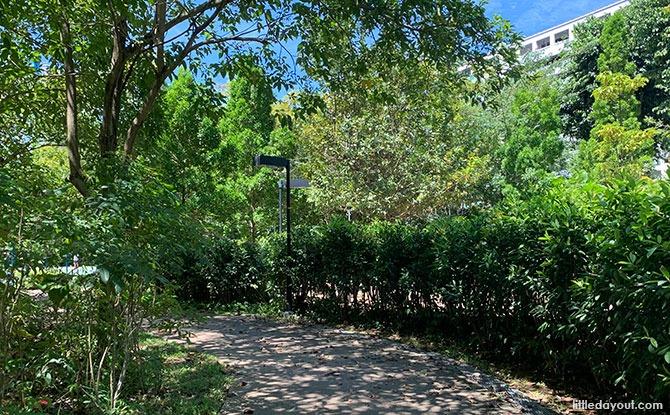 Visiting Yishun Nature Park