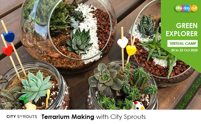 Green Explorer Camp: Terrarium Making by City Sprouts