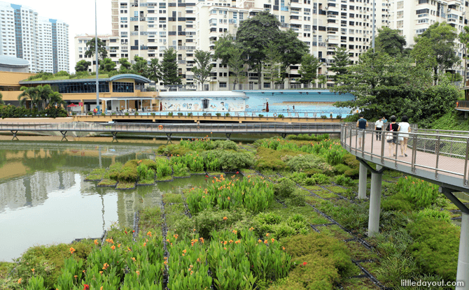 Pang Sua Pond is located next to Senja-Cashew Community Centre