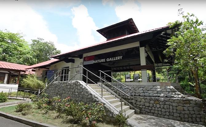 Chek Jawa virtual tour