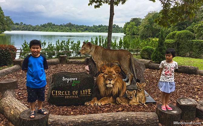 02 circle of life festival