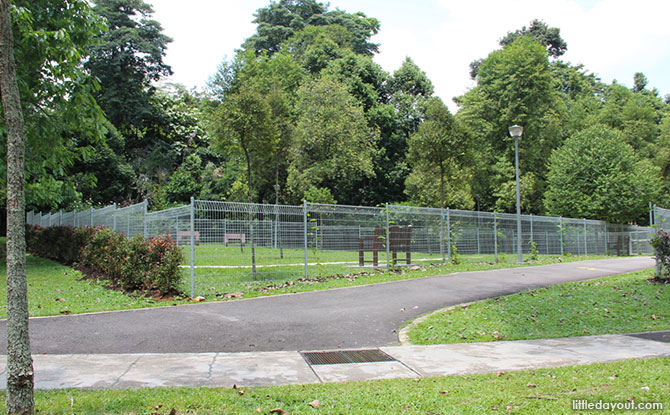 Yishun Park Dog Run