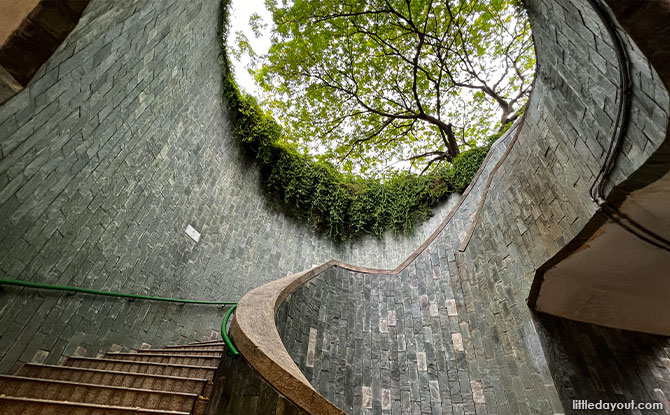How To Get To The Fort Canning Tree Tunnel