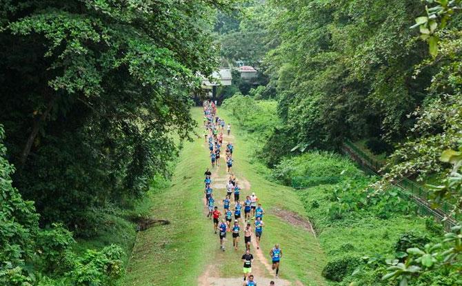 PUB Green Run 2021