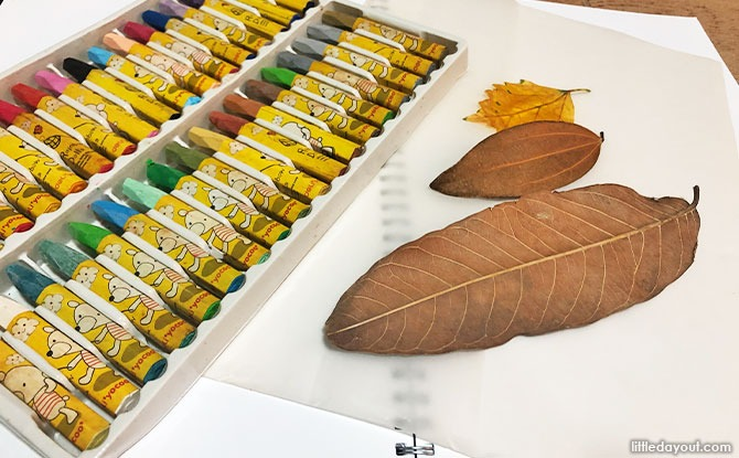 Materials Needed for Leaf Rubbing Art