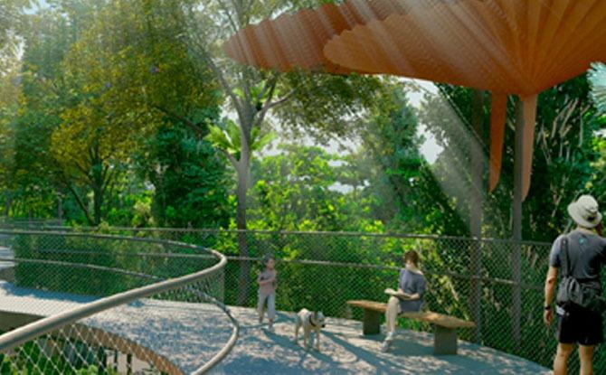 Design Concept of the Bukit Timah-Rochor Green Corridor Project