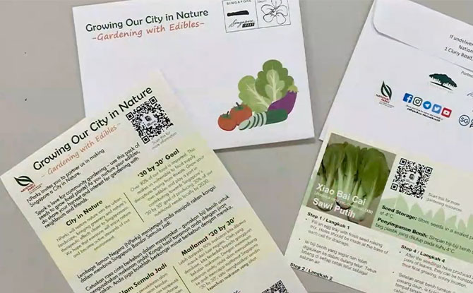 NParks Is Distributing 400,000 Seed Packets Under Their Gardening With Edibles Programme