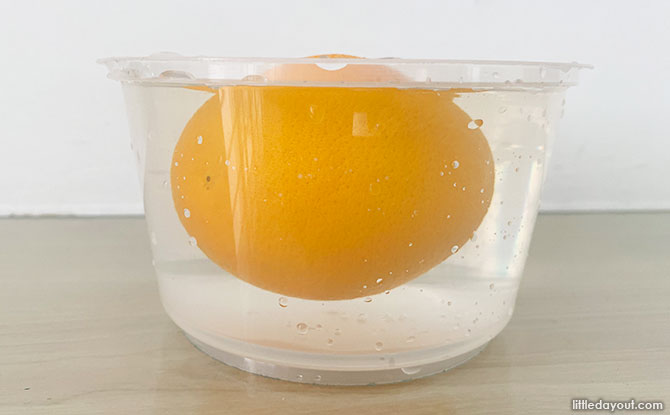 Orange Floats - Science Experiment