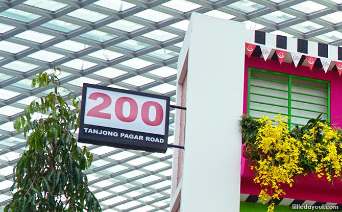 Orchid Extravaganza - Bicentennial Year