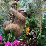 Orchids Of The Amazon & Tree VR Experience: Bringing The Amazon To The Cloud Forest, Gardens By The Bay