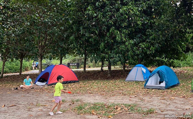 Pulau Ubin Camping With Kids: A Taste Of Rustic