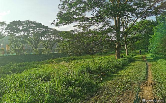 An Easy Walk from Hillview to Choa Chu Kang